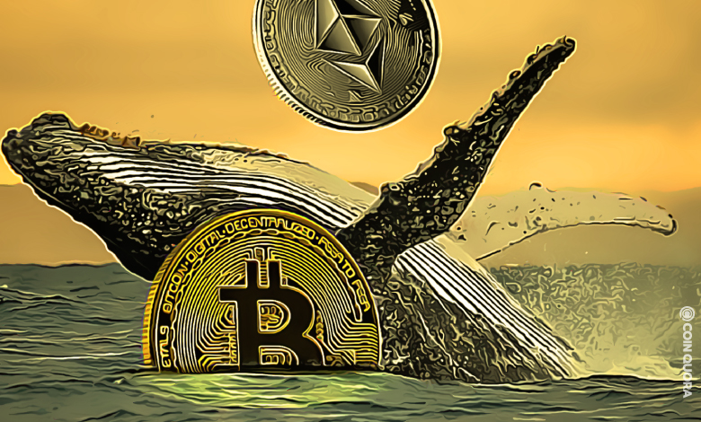 BTC and ETH Whales Transfer Over $321M in 24 Hours