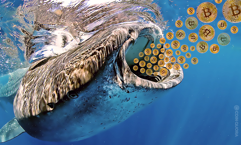 Whales Sold $532M Worth of Bitcoin (BTC) After Hitting $19K