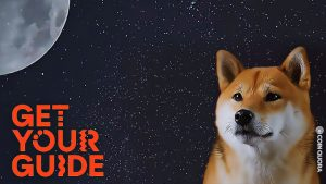 Dogecoin Adoption Continues Increase Day by Day