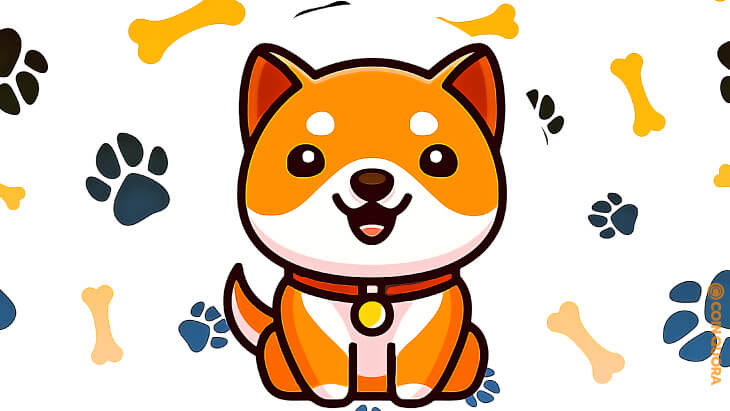 Baby Doge Coin Now Has Over 370,000 Holders
