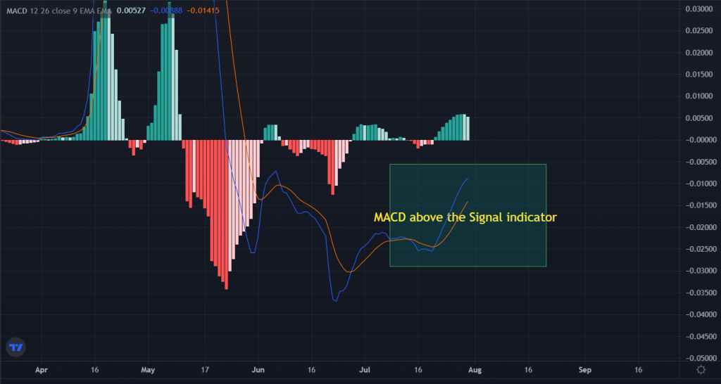 Doge-Coin-Trading-View-1