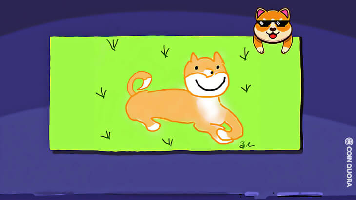 Dogecoin Creator Launches 5th Crappy Dogecoin Doodles NFT