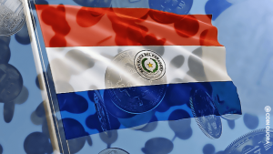 Paraguay's Much-Awaited Bitcoin Bill Makes Its Debut