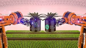 FLURRY Finance and Kyber Network Set To Optimize Yield Farming