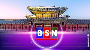MetaverseSociety as the First BSN Operator Outside China