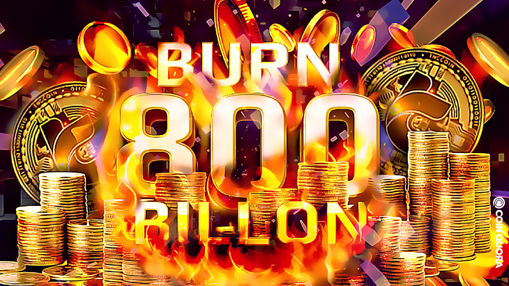 TNC-Coin-Will-Burn-800-Billion-Coins-To-Boost-Ecosystem